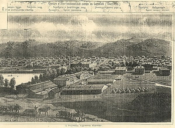 Вид на Сузунский завод
